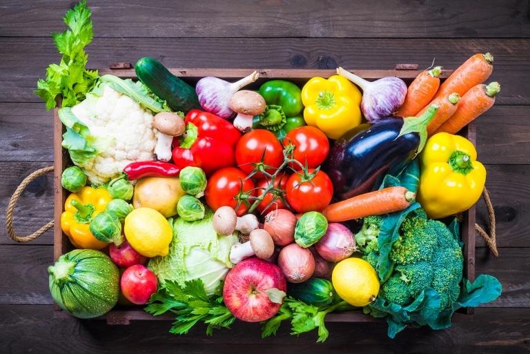 FOCUSON Logistikdienstleistungen für Gemüseproduzenten